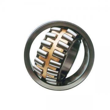 55 mm x 120 mm x 49.2 mm  Rollway 3311 C3 Angular Contact Bearings
